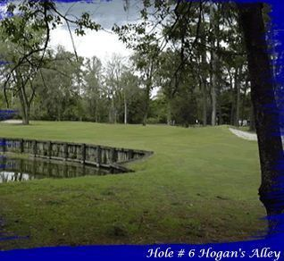 Hyde Park GC Hole 6 - 'Hogans Alley'
